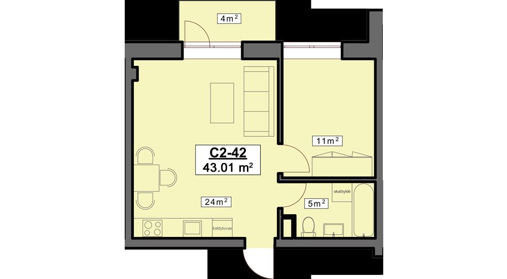 C2 42