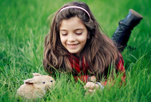 Girl_playing_rabbit-wide-copy